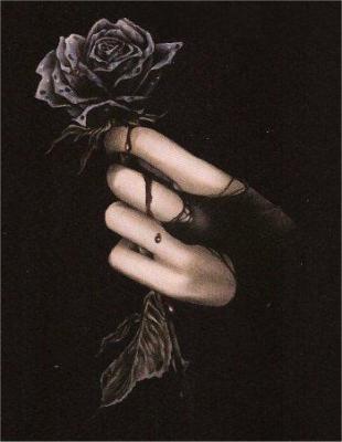 Passe le temps,passe la vie,passe l'amour,passe les roses